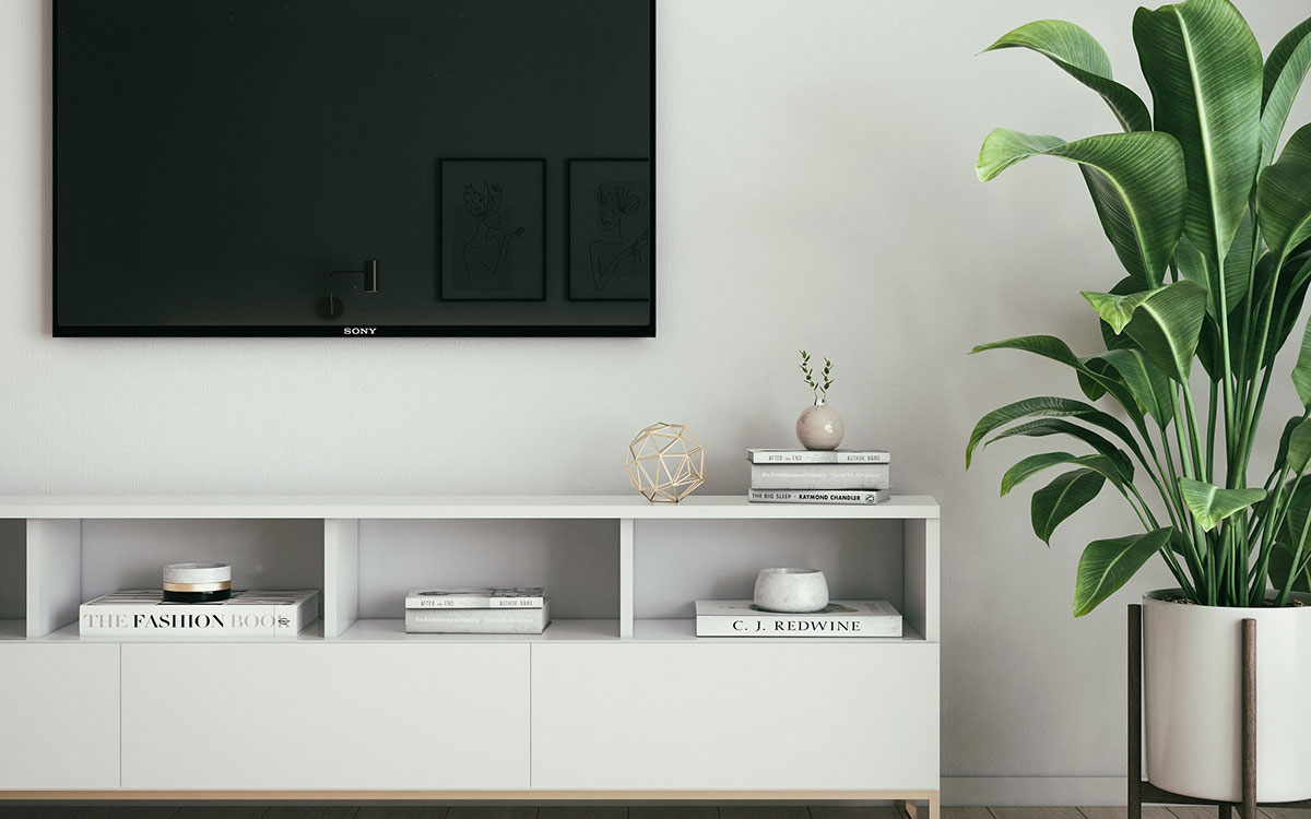 House plant in living room beside TV and cabinet